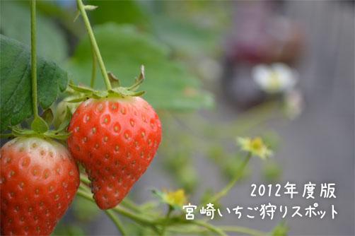 2012 宮崎県いちご狩りスポット